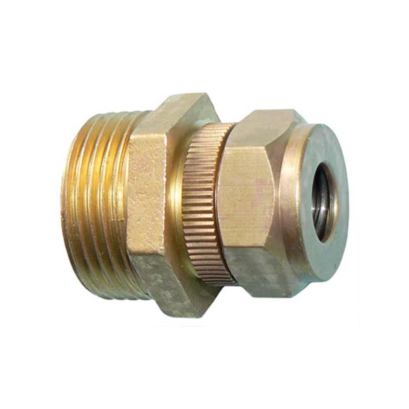 Brass Spring Safety Valve 1/2in BSP